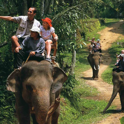 Bali Elephant Camp Ride